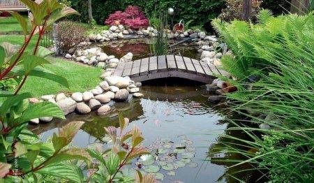 Варианты устройства пруда в саду